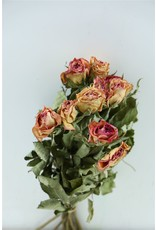 Dried Roses Lilac 10pcs Scented P B x 2