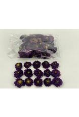 Dried Dahlia Heads Violet Bag (50-60 Heads) x 1