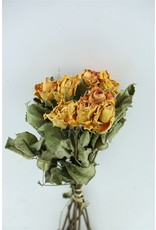 Dried Roses Orange 10pcs Scented Bunch x 8