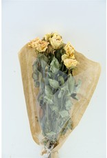 Dried Roses 40cm Salmon 10pcs Bunch x 2