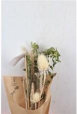 Dried Bouquet Mini White x 12