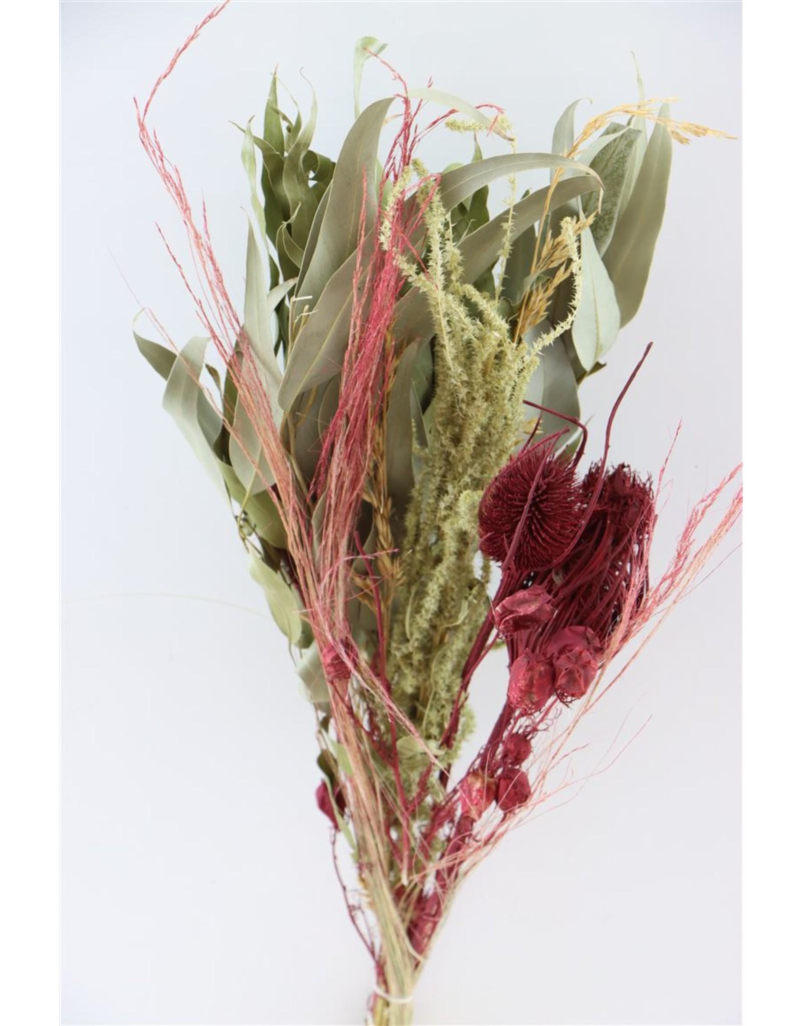 Dried Bouquet Saint Martin Nr29 x 1