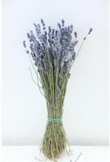 Dried Lavendel Dark Blue 45gr Bunch x 5