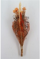 Dried Bouquet Luxo Gold Orange x 1