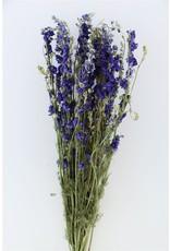 Dried Delphinium Blue Bunch x 2