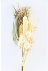 Dried Bouquet Babala/thistle Bleached x 2