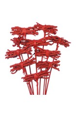 Cocochain posy 8cm posy o/s 10pc red red glitter x 14