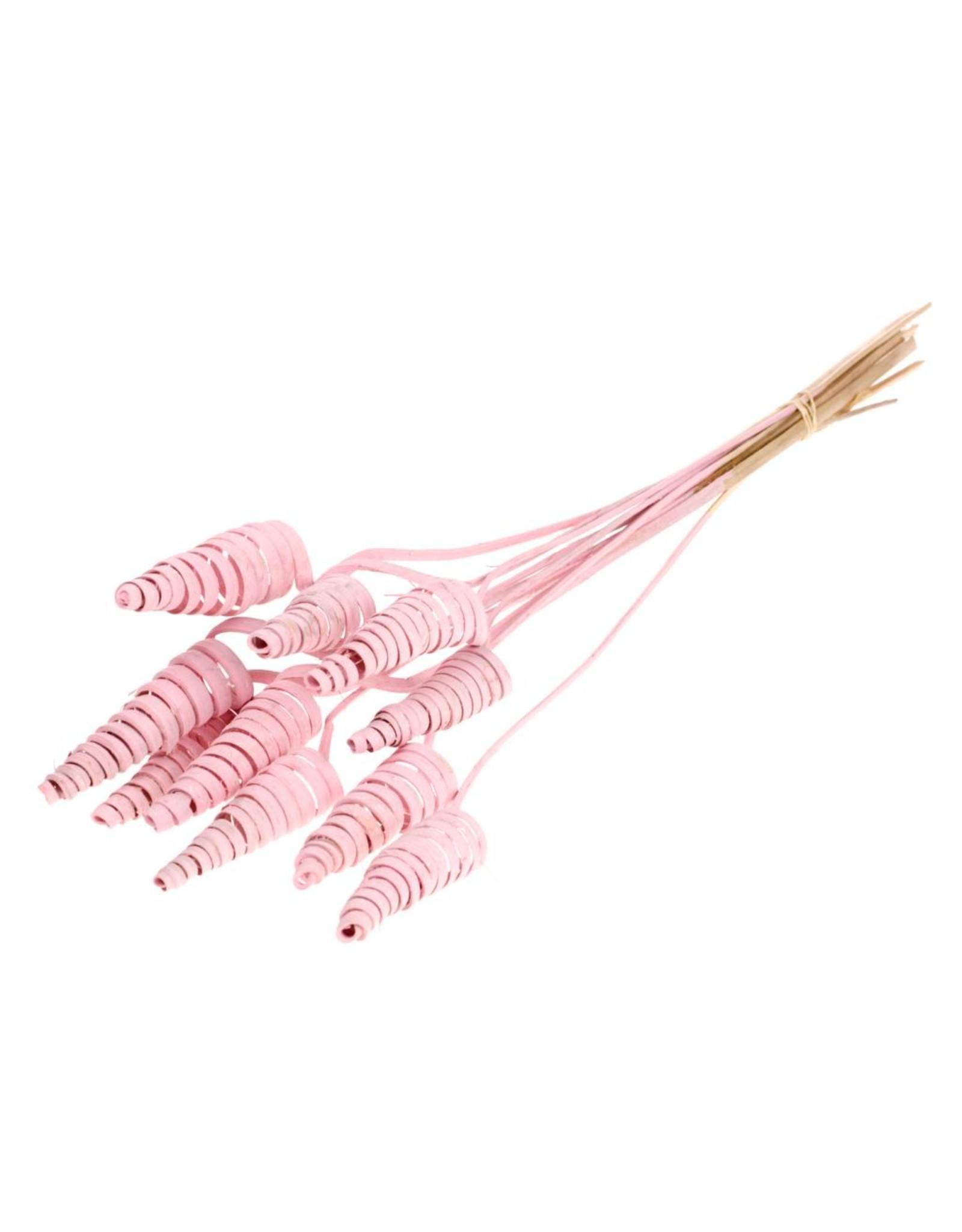Cane cone pink misty x 30