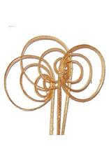 Cane coil 10pc gold gold glitter x 30