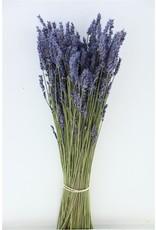Dried Lavendel Super Blue 100gr Bunch x 5