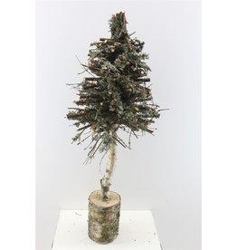 Tree Larix W. Stem H100 x 1