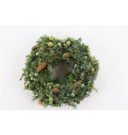 Wr. Juniperus/pinea 30cm x 1