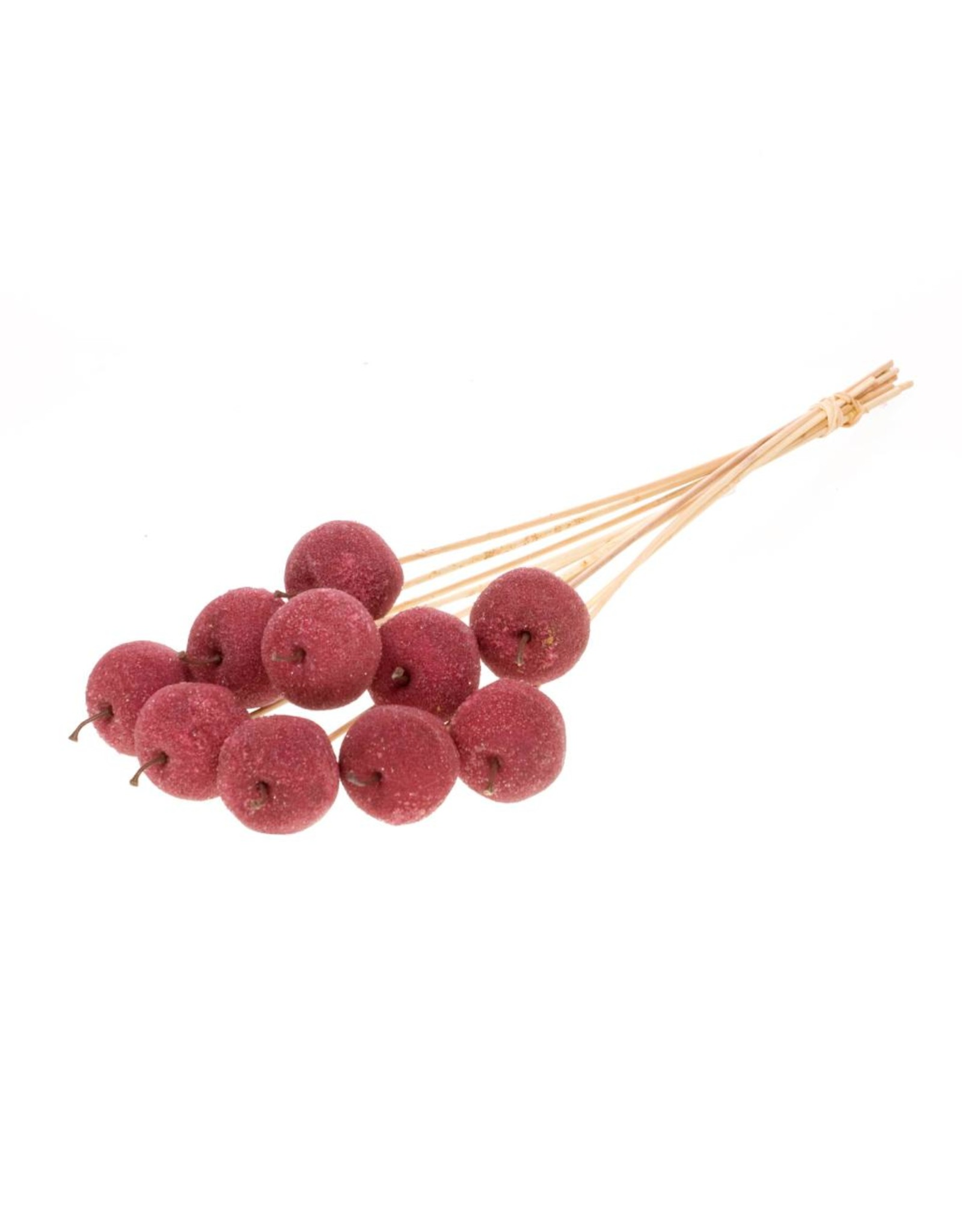 Apple sugar 5cm o/s 10pc red spring x 20