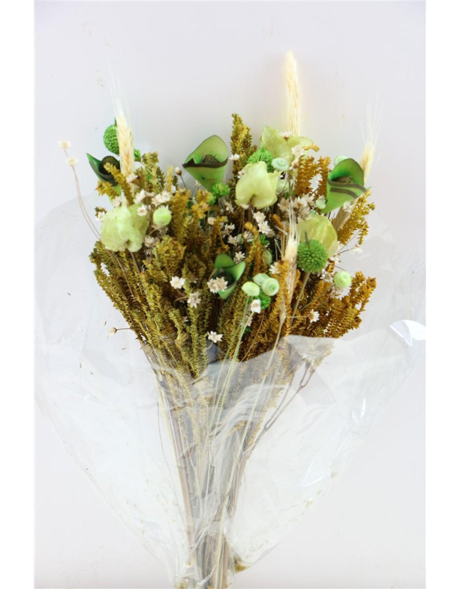 Dried Bouquet Fantasia Green x 1