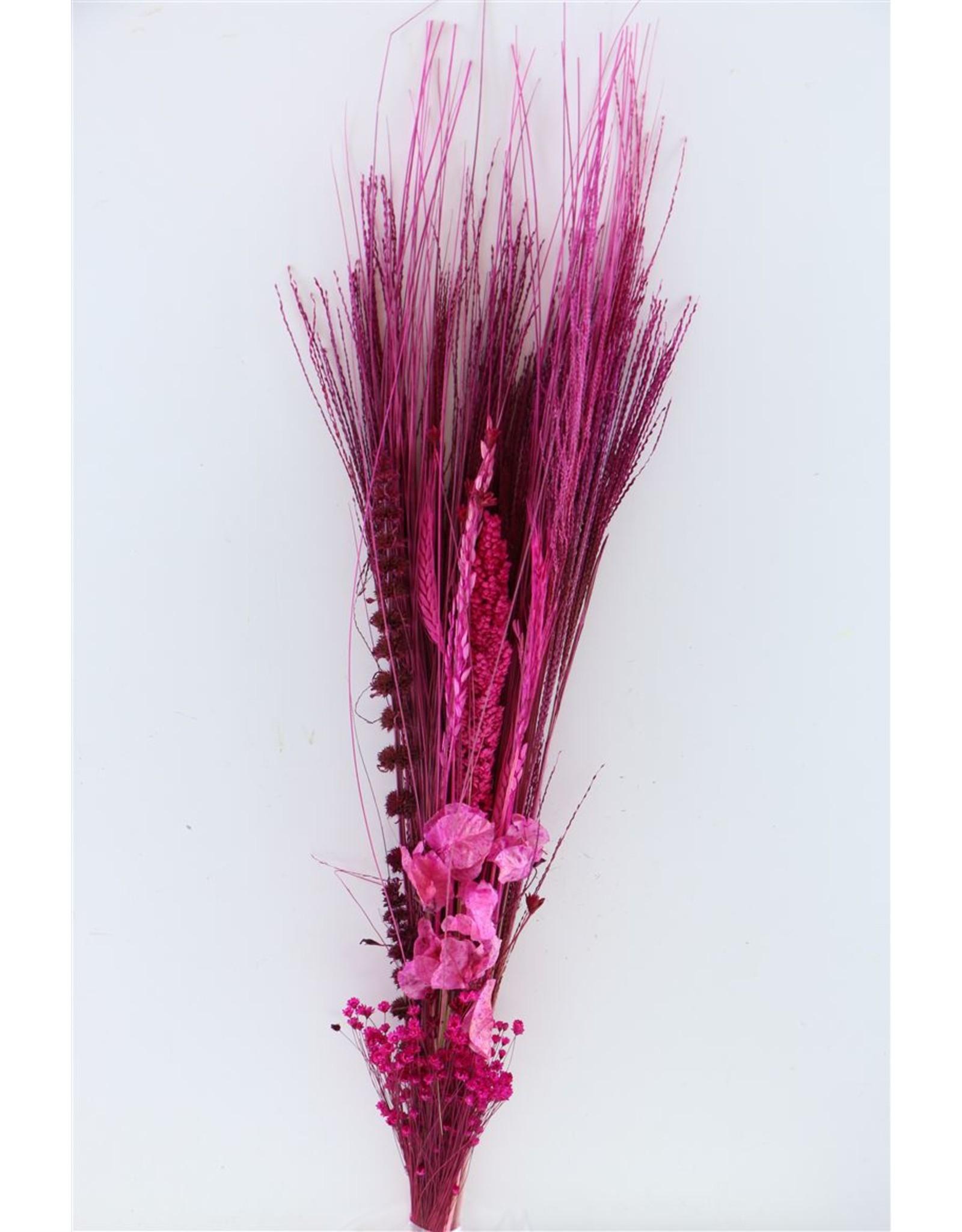 Dried Bouquet Romance Roze x 5