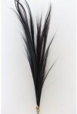 Dried Grain Grass 3pcs 100cm Black x 4