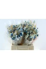 Dried Bouquet Fantasia Light Blue x 5