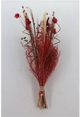 Dried Bouquet Luxo Gold Red Per Bunch x 5