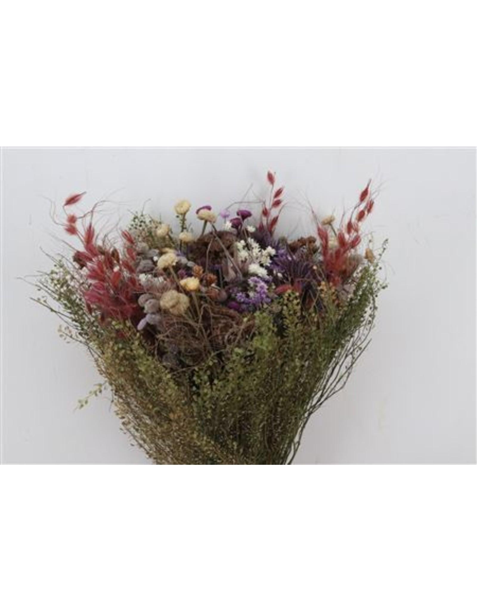 Dried Bouquet Seasons Milka Per Bunch x 2