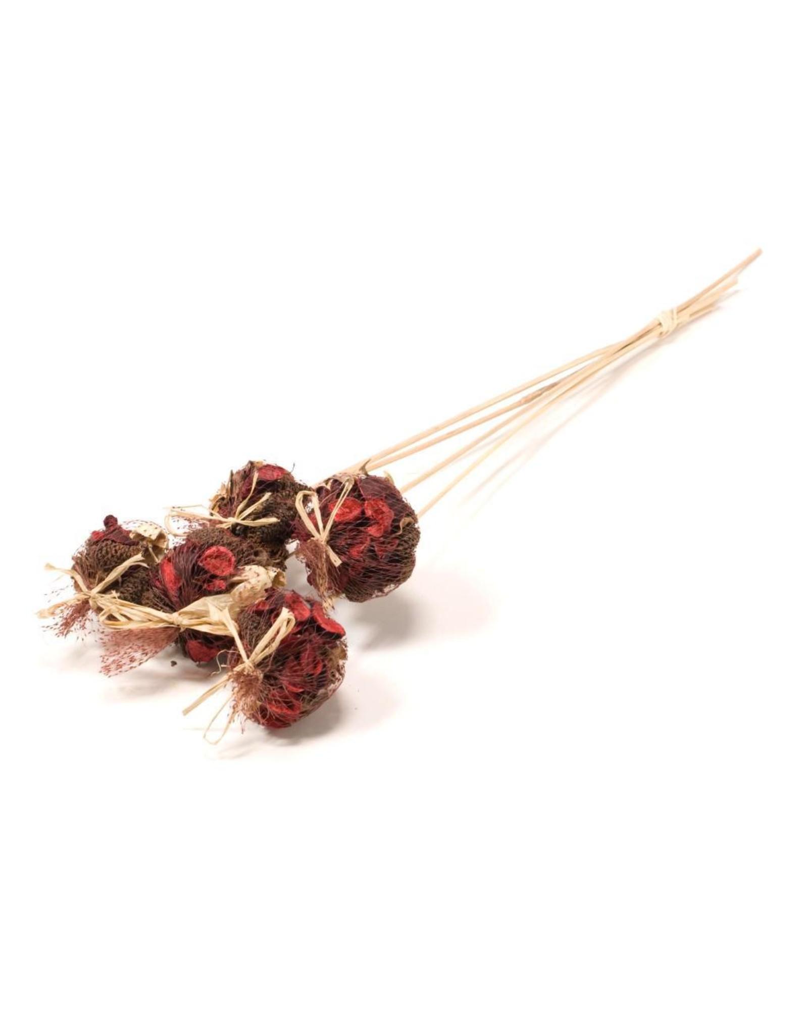 Potpourri mix on stem 10pc SB red x 2