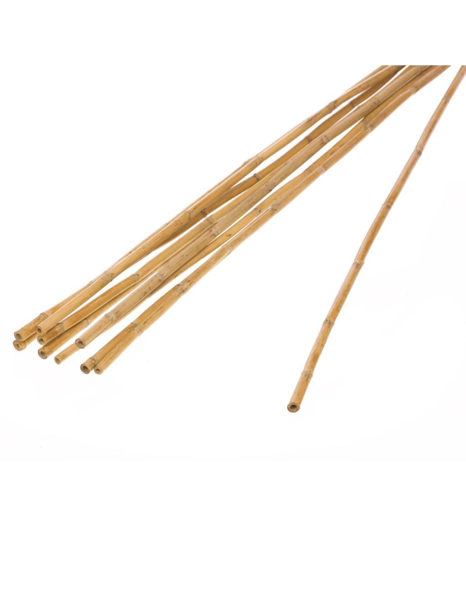 Bamboo stick natural x 36