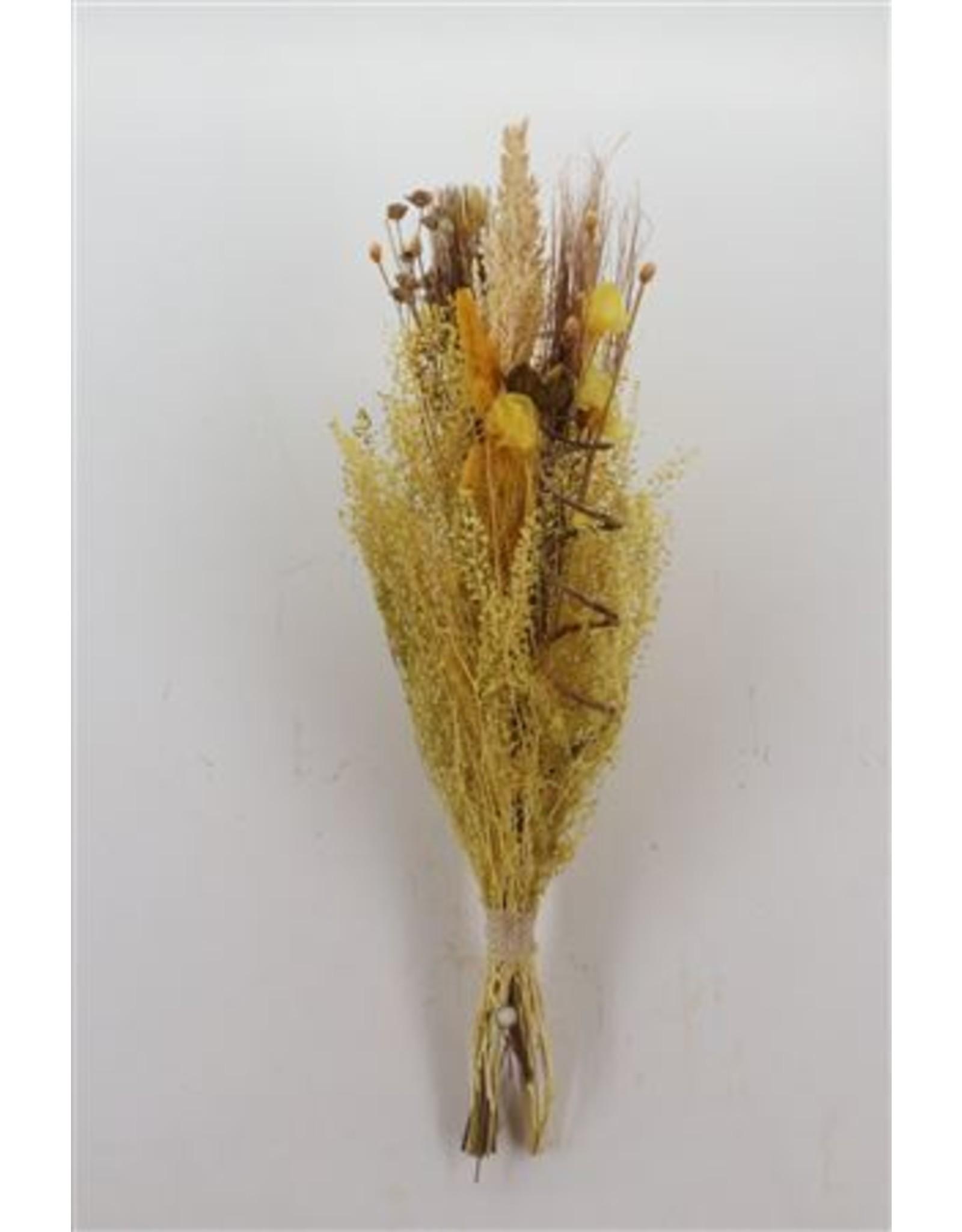 Dried Bouquet Luxo Gold Yellow x 5