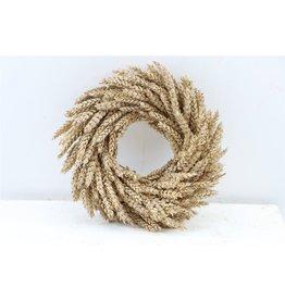 Wr. Dried Triticum 30cm Taupe x 1