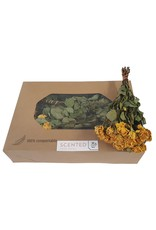 Dried scented spray roses 10pc per bunch Yellow x 8