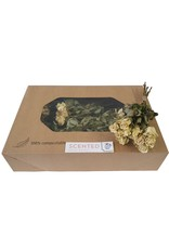 Dried scented roses 10pc per bunch White x 8