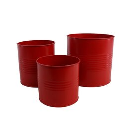 Plant. Canned Craft S/3 x 1