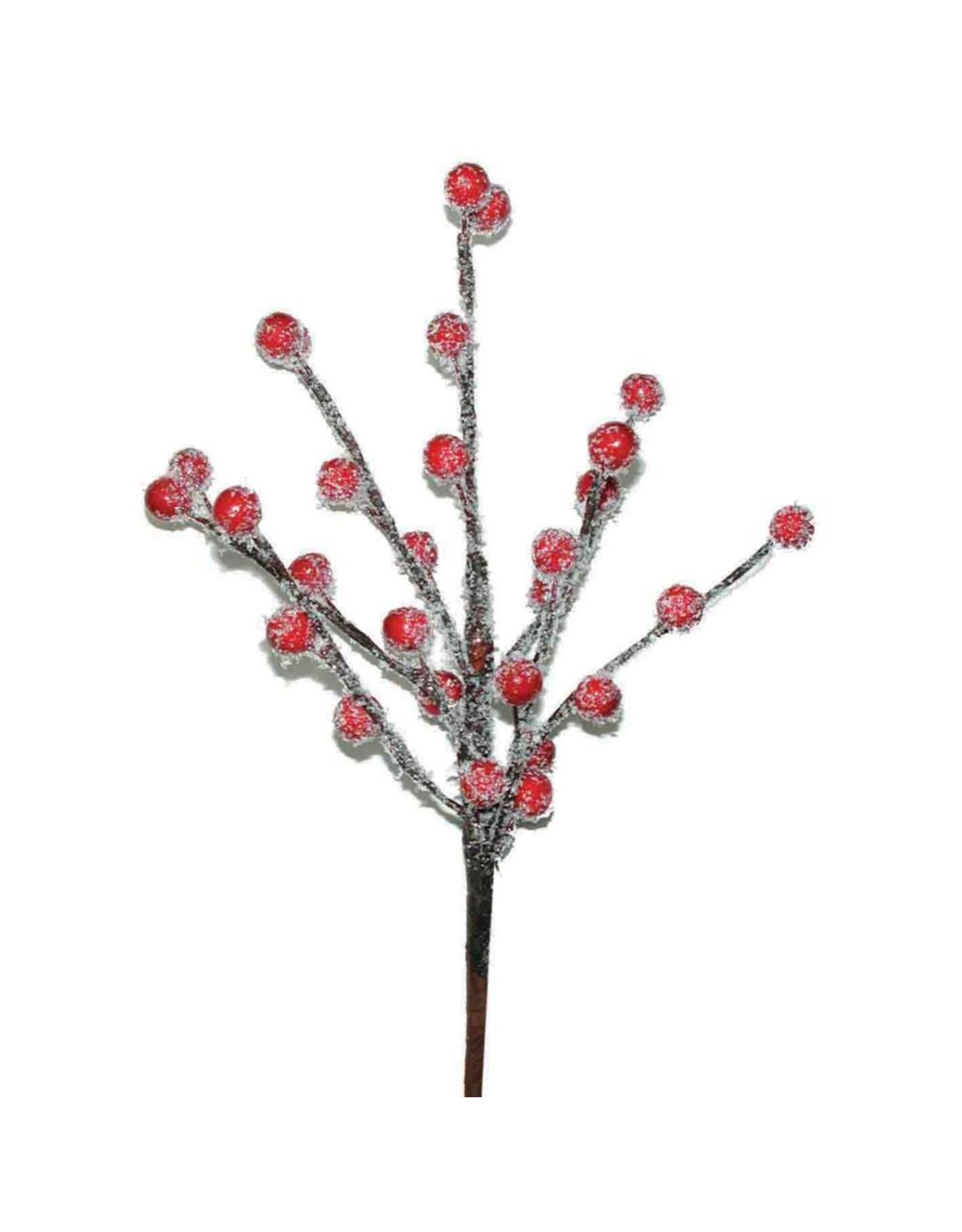 LDD Ilex berry o/s 10pc SB red + snow x 5