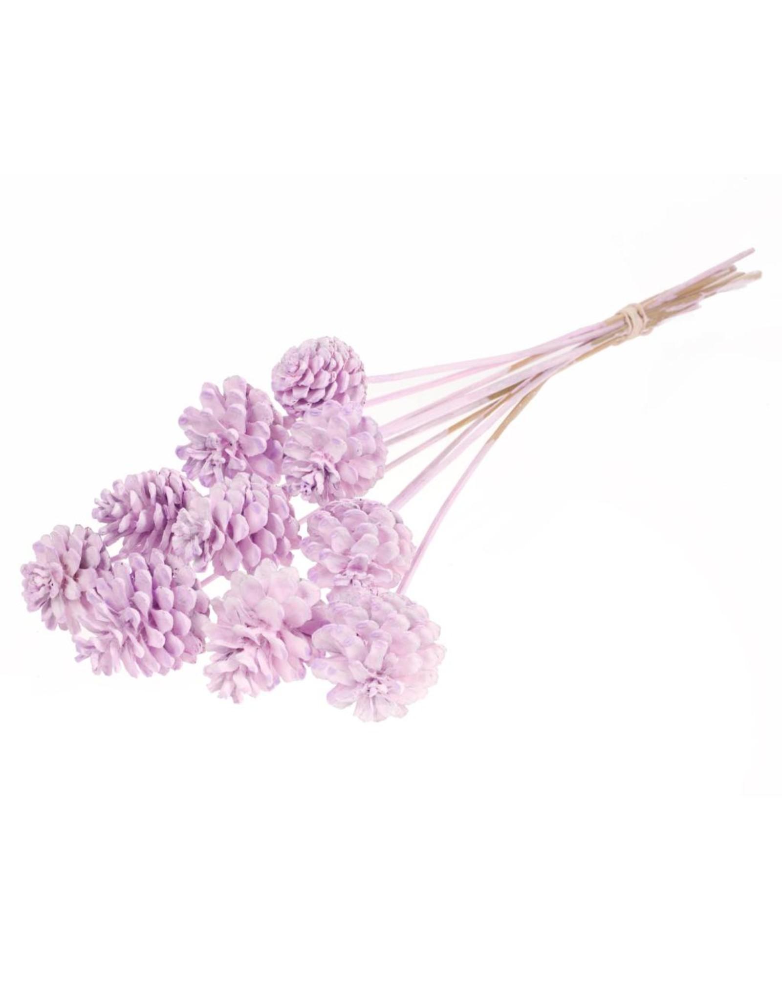 LDD Pine cone 5-7cm o/s lilac misty x 11
