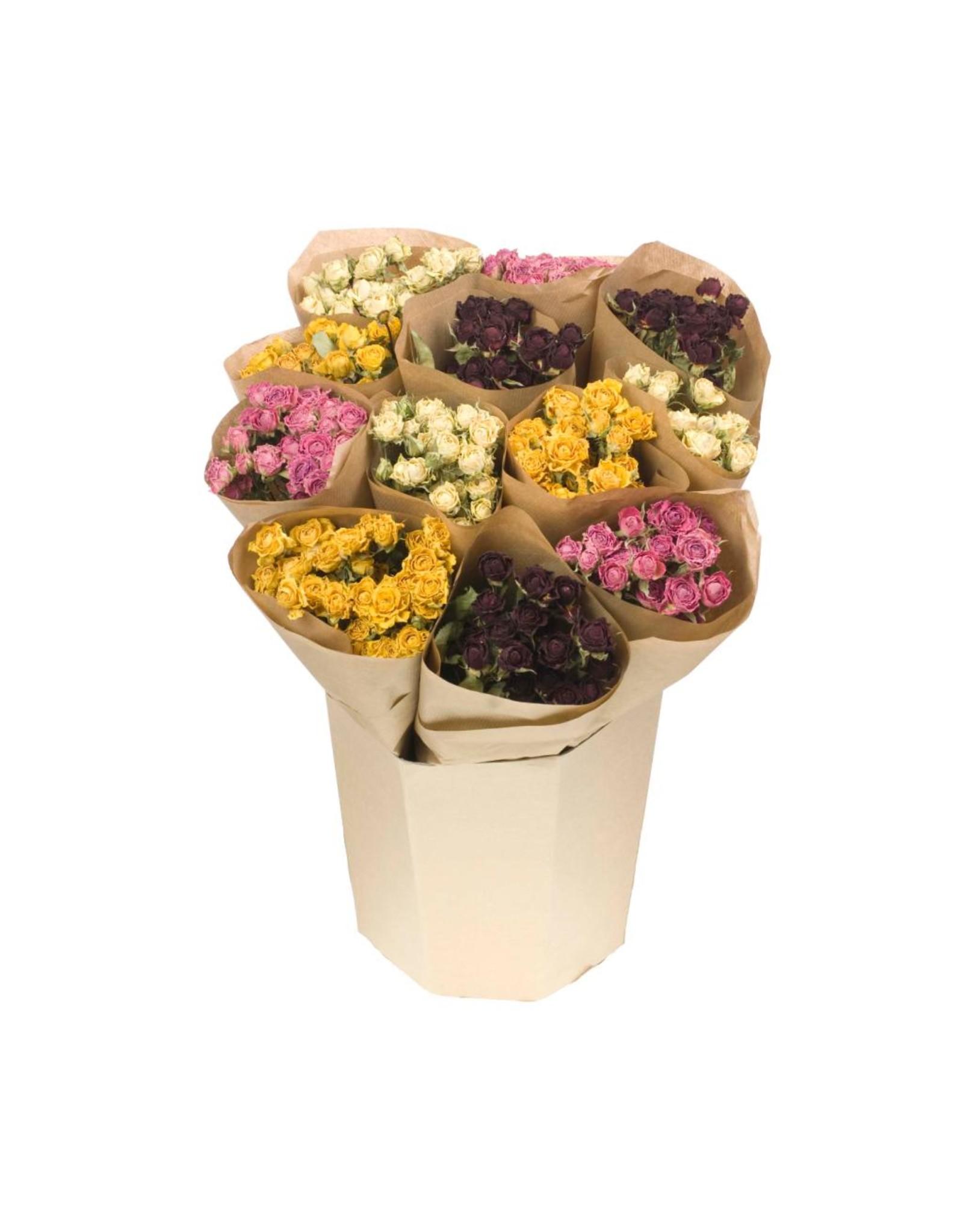 LDD Bucket mix: roses spray mixed x 12