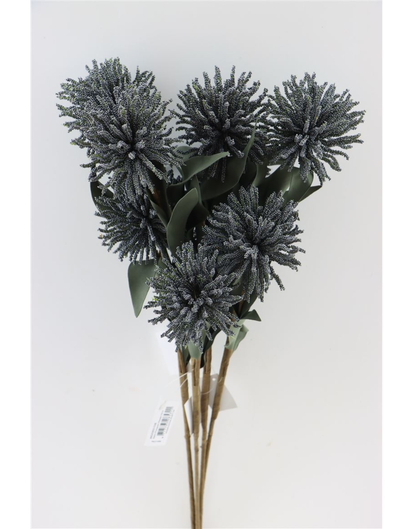 GF Deco Pompom Flower 70cm Black P. Stem x 4