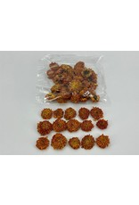 GF Dried Dahlia Heads Orange Bag (50-60 Heads) x 2