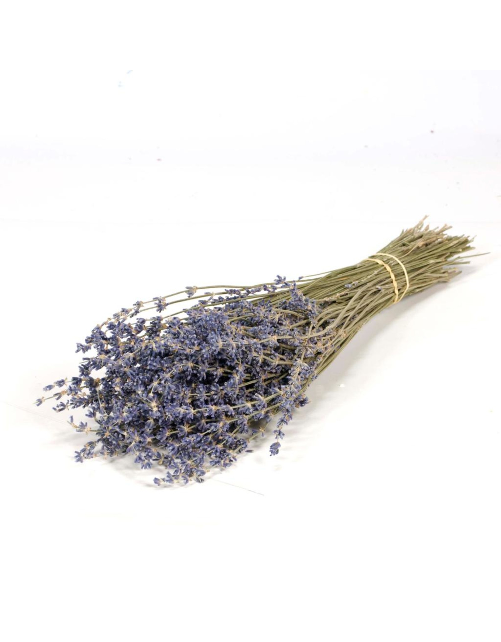 LDD Lavender 100gr natural blue x 40