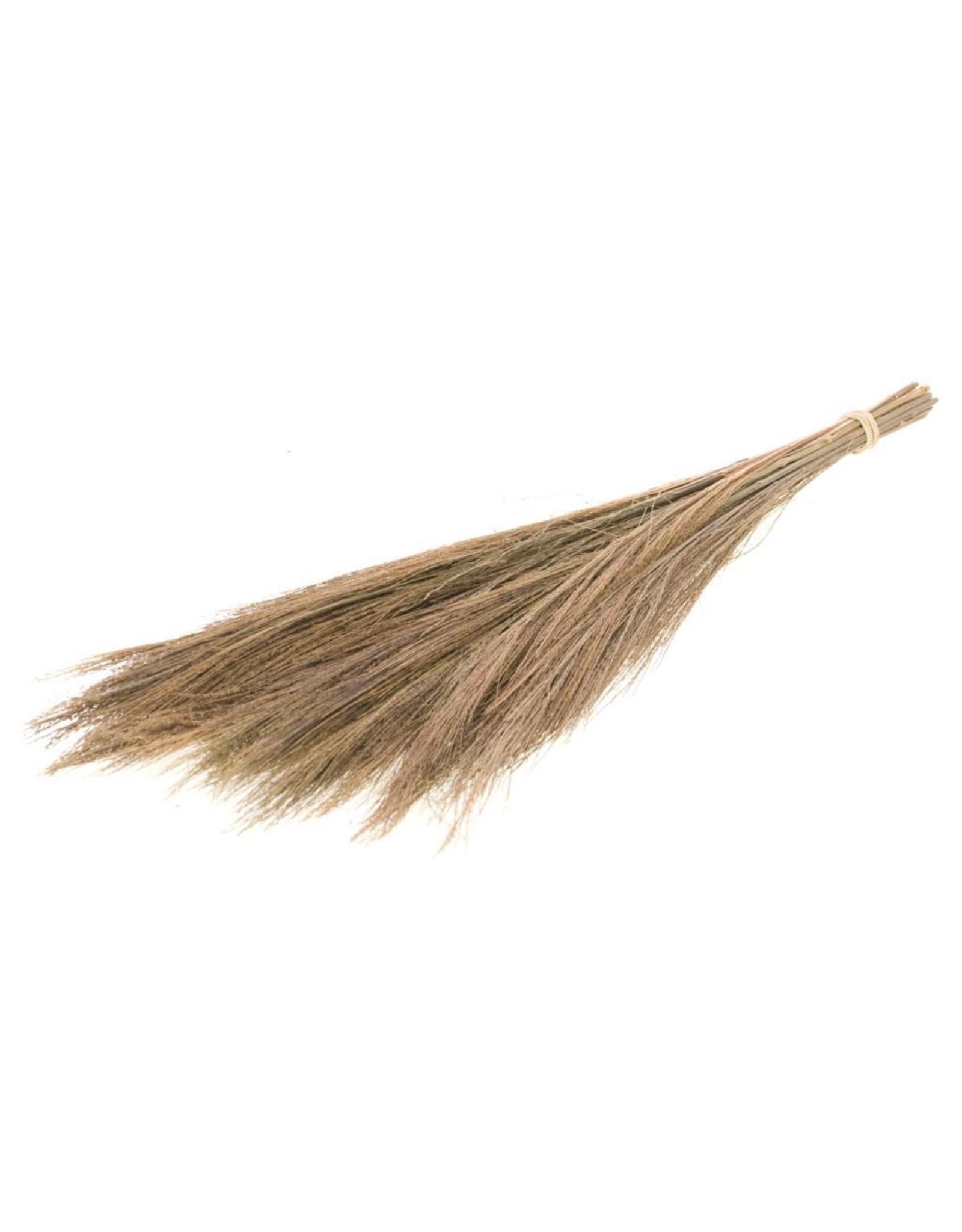 LDD Broom grass 100gr 65cm natural x 36