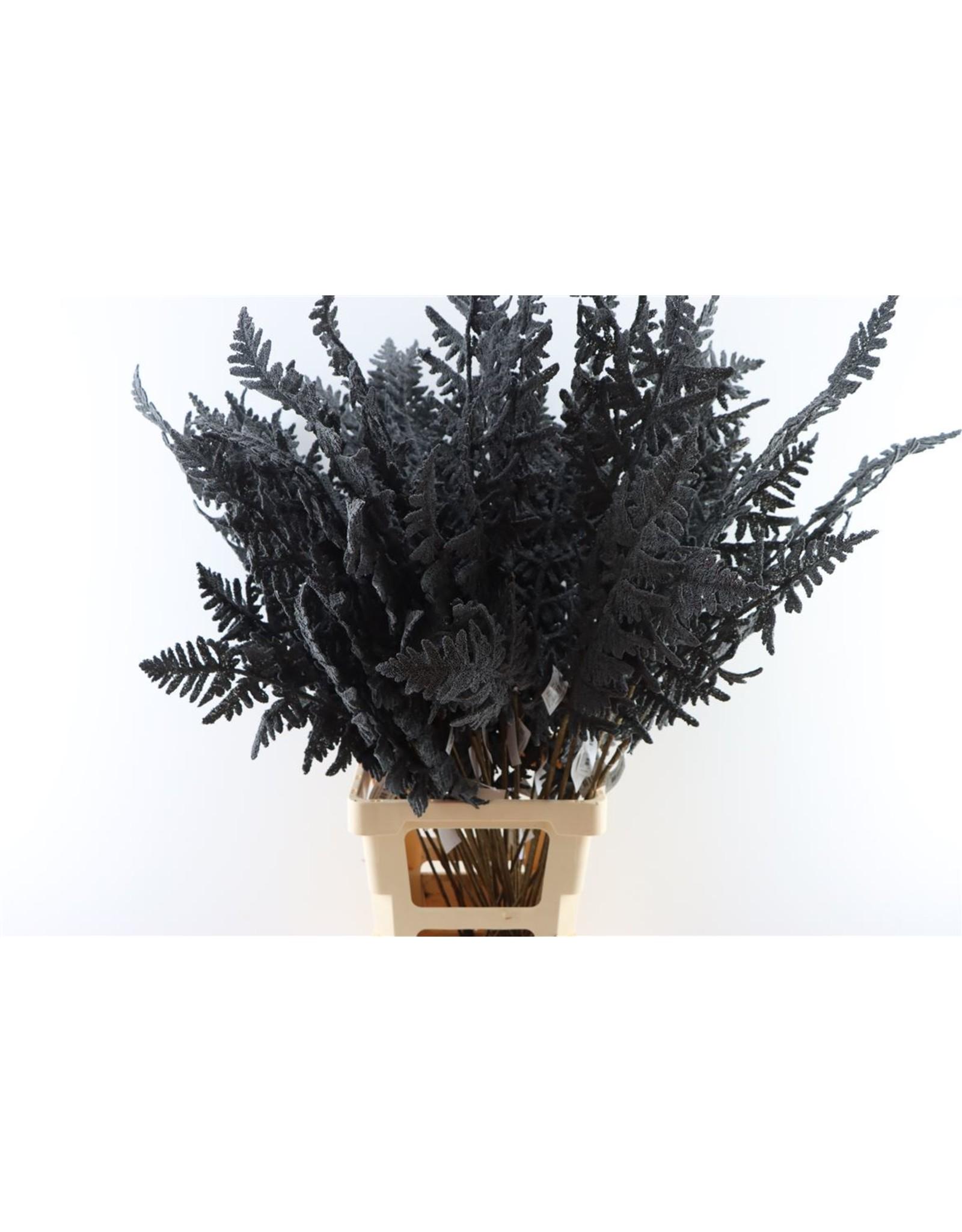 GF Deco Fern Leaf 100cm Black P. Stem x 4