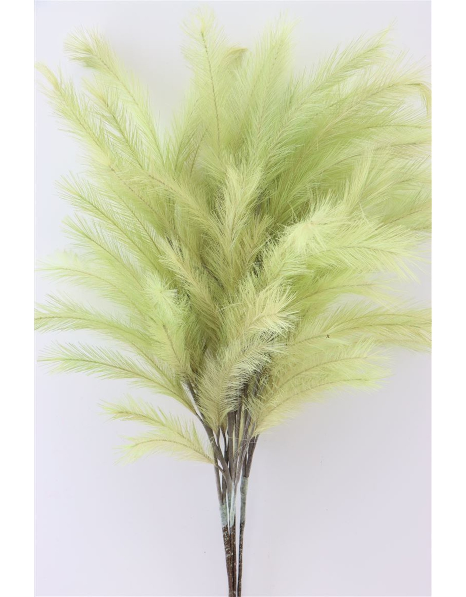 GF Deco Panicle Grass 100cm Mint Green P. Stem x 4