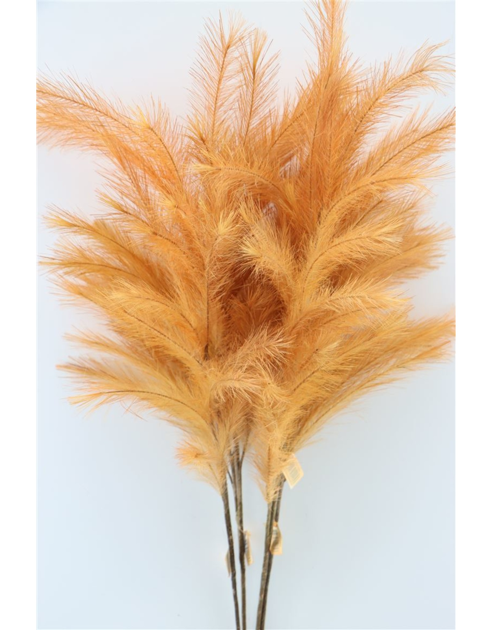 GF Deco Panicle Grass 100cm Salmon P. Stem x 4