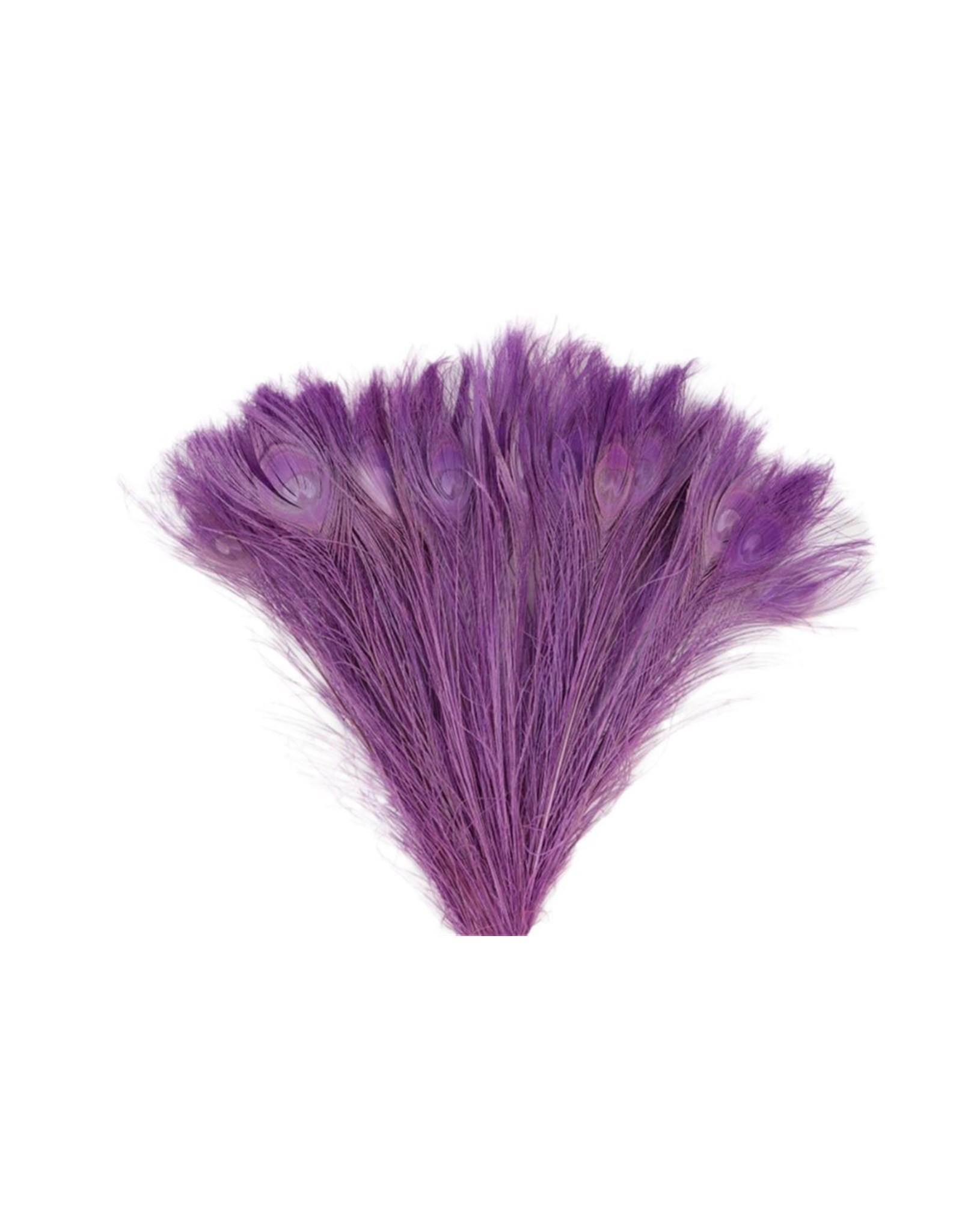 GF Dried Feather Peacock 45/50cm Milka x 50