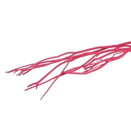 GF Mitsumata Fl. Pink 3pcs Bunch x 5