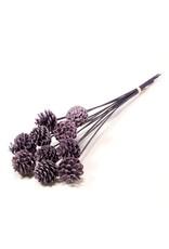 LDD Pine cone 5-7cm o/s wax 10pc SB wax purple x 3