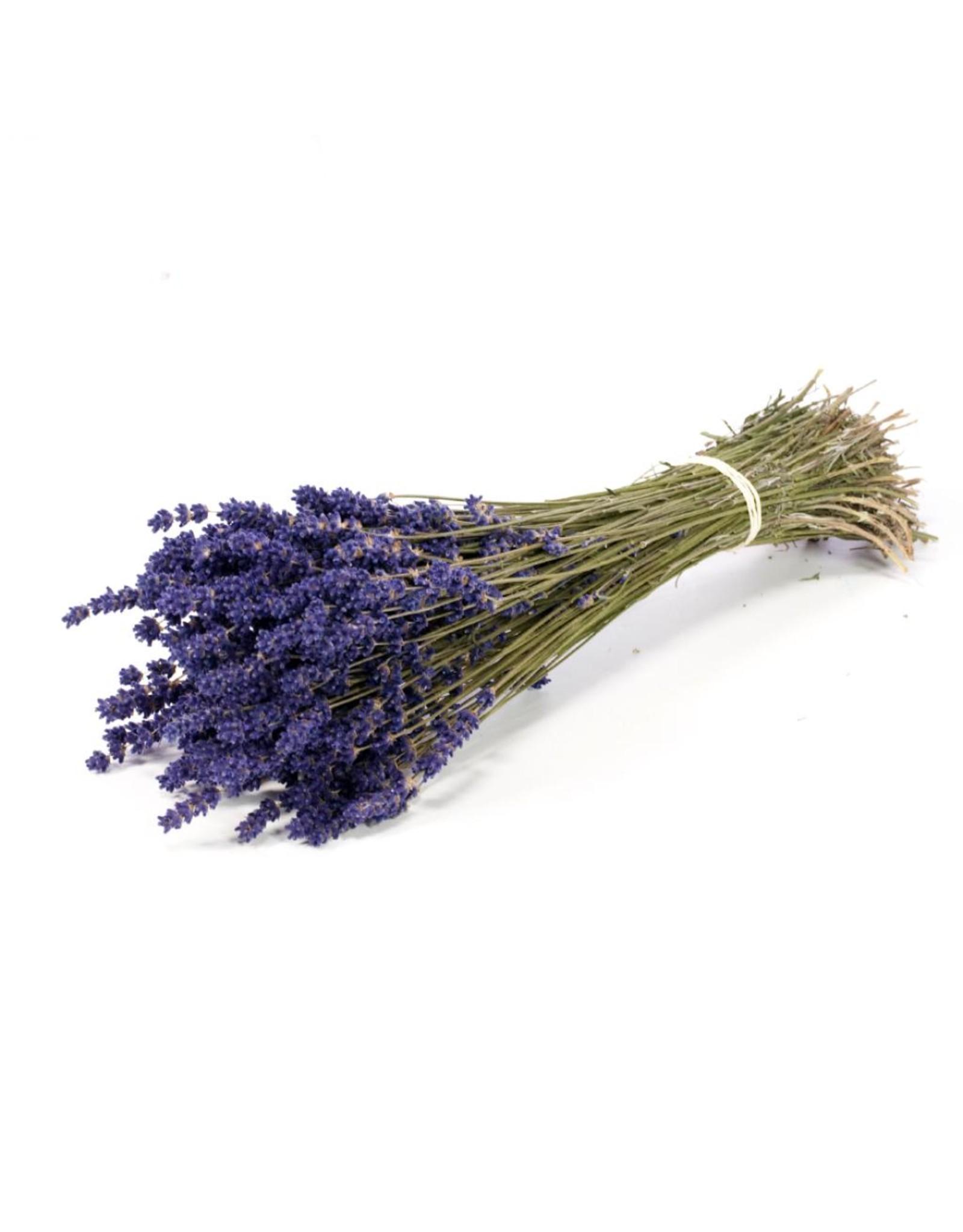 LDD Lavender 70-80gr extra natural blue x 40