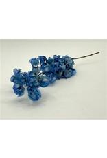 GF Dried Bougainvillea 45cm D. Blue Bunch x 5