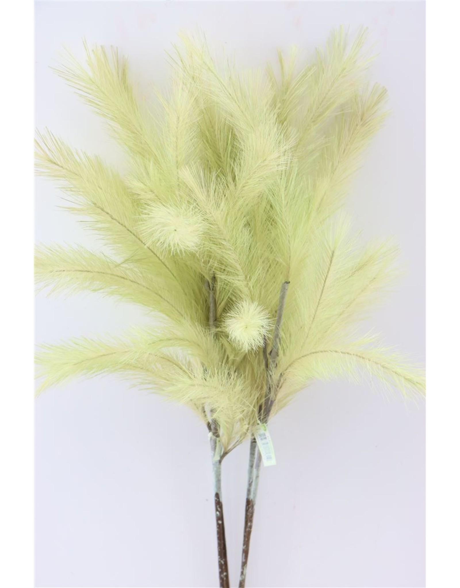 GF Deco Panicle Grass 75cm Mint Green P. Stem x 4