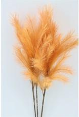 GF Deco Panicle Grass 75cm Salmon P. Stem x 4