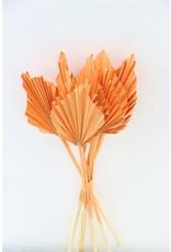 GF Dried Palm Spear 10pc Salmon Bunch x 3