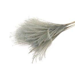 HD Bunch Fluffy Silver Grass 10pc Slv H75.0 x 25