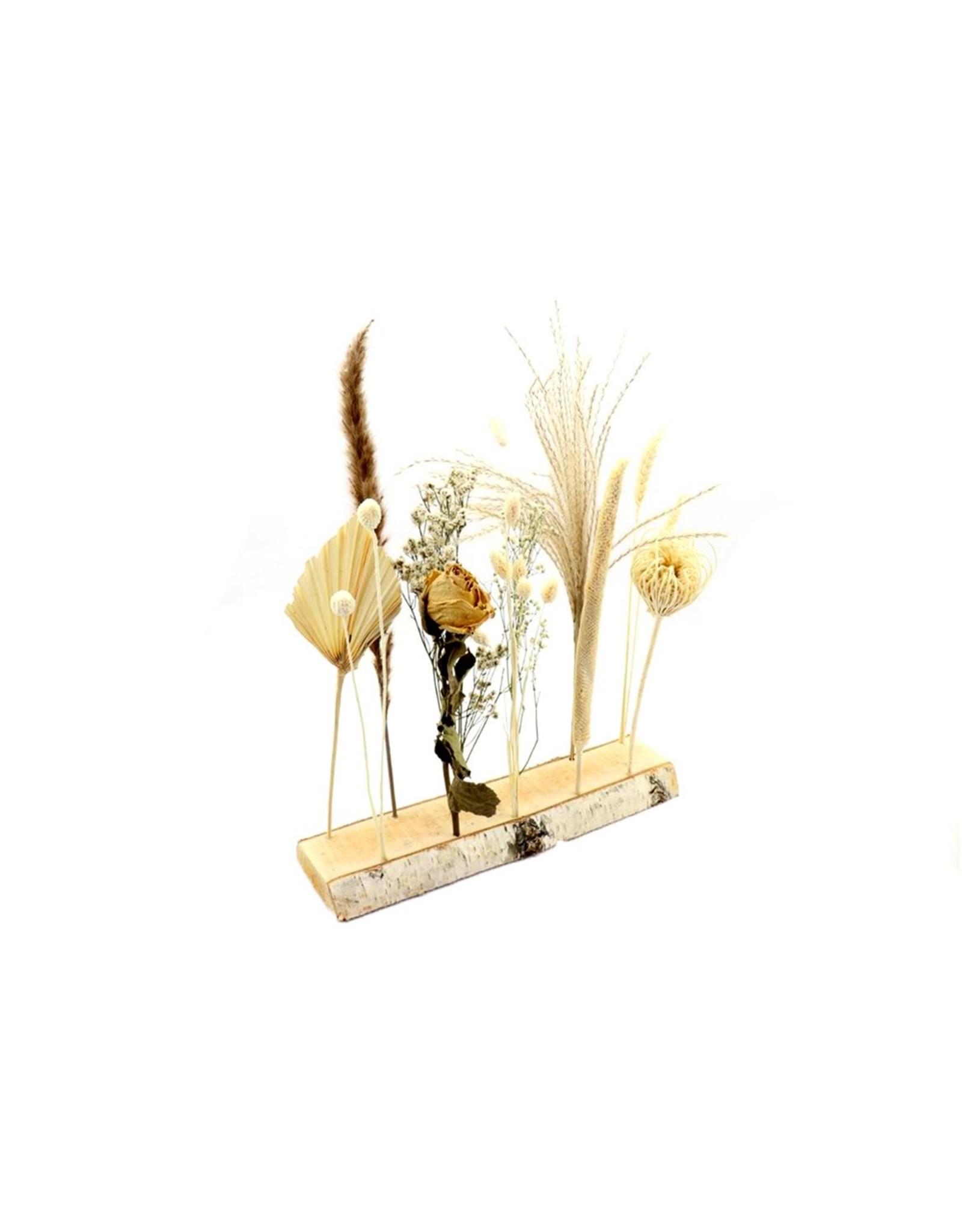 HD Arr. Dried Flowers Bianca W7-11 L40.0h35.0 x 5